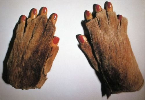 "Meret Oppenheim  ""Fur Gloves with Wooden Fingers"" 1936"